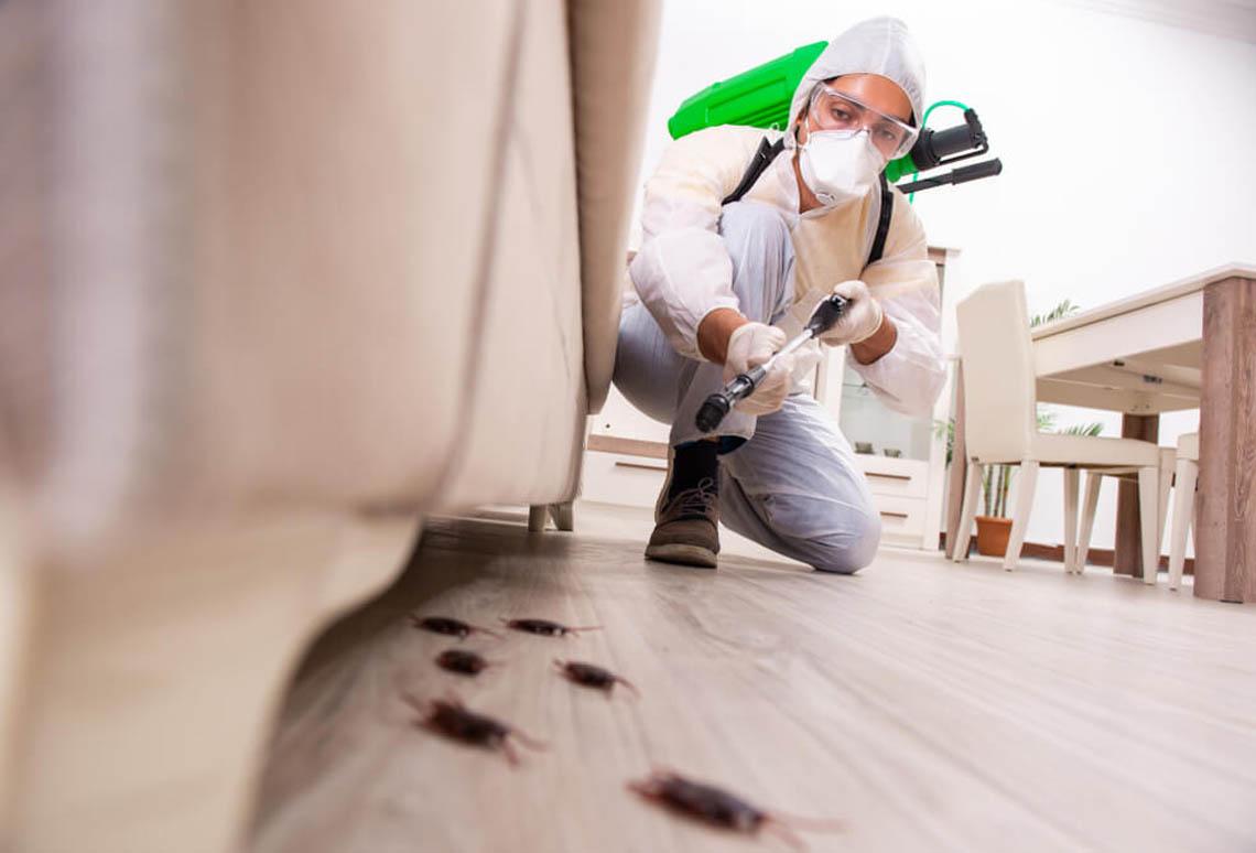 pest control company in uae
