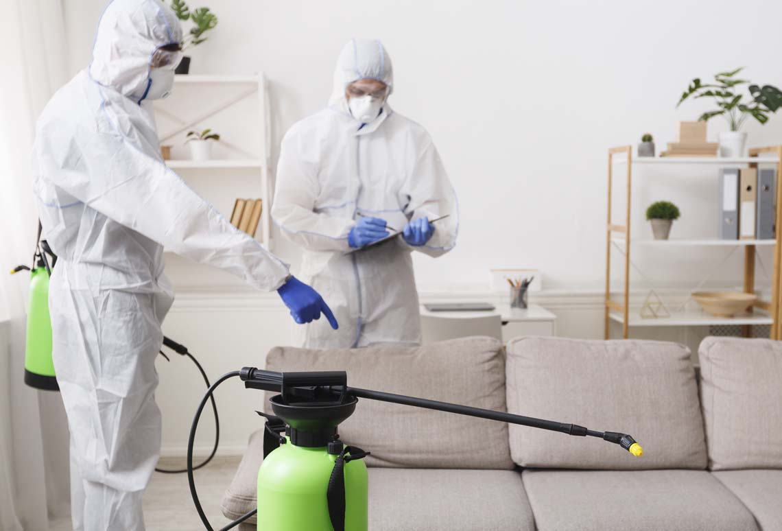 sofa cleaning services company