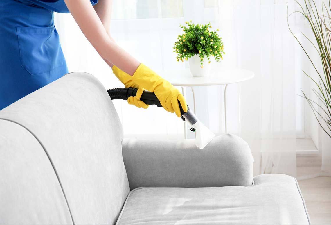 steam sofa cleaning services